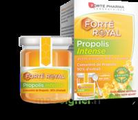 Forte Pharma Propolis Intense Gelée Pot/40g à Muret