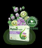 Phytoxil Transit Comprimés B/20 à Muret