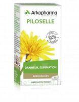 Arkogélules Piloselle Gélules Fl/45 à Muret