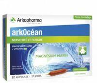 Arkocean Magnesium Marin Solution Buvable Caramel 20 Ampoules/10ml à Muret