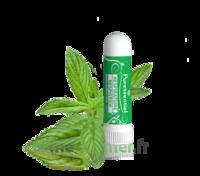 Puressentiel Respiratoire Inhaleur Respiratoire Aux 19 Huiles Essentielles - 1 Ml à Muret