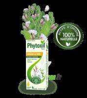 Phytoxil Toux Sans Sucre Sirop Adulte Enfant +2 Ans Fl/120ml à Muret