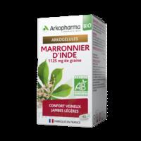 Arkogélules Marronnier D'inde Bio Gélules Fl/45 à Muret